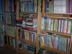 The main wall of books--about a third of what we have.